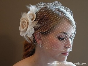 Etsy-Ivory-Blusher-Birdcage-Veil-with-Double-Swarovski-Rhinestone-Edge-with-Detachable-Ivory-And-Champagne-Flower-Fascinator