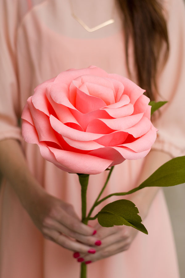 How-To-Make-A-Crepe-Paper-Rose
