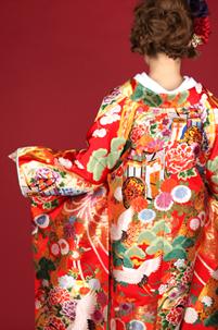 赤をベースとした色打掛に鶴の柄で縁起よく。髪飾りの色を合わせるのもGood