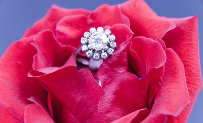 Red rose with a diamond engagement ring