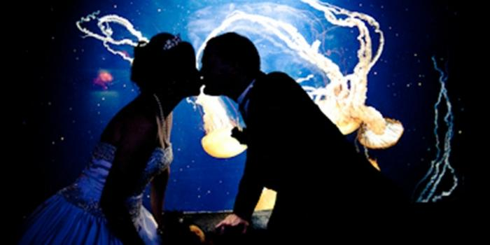 weddingkiss_329x697_697x329_Fotor_main